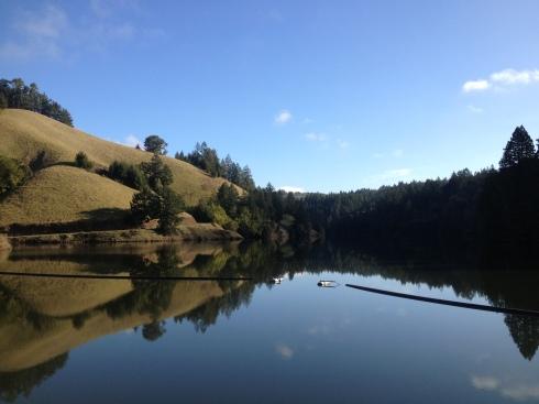 Lear calm day at Alpine Dam